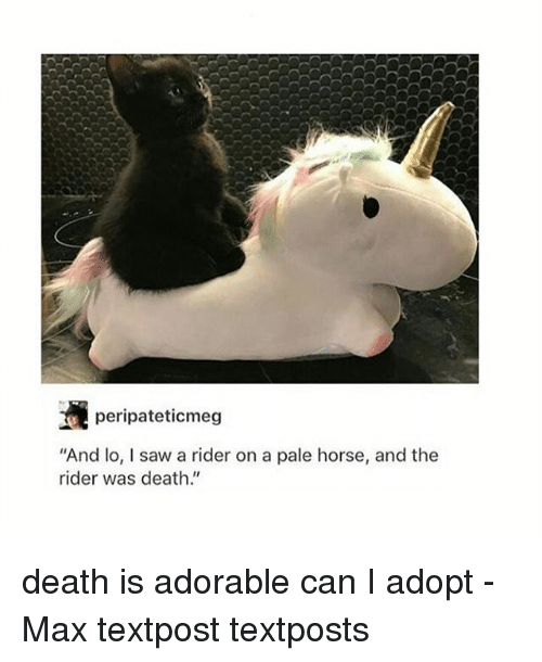 """Memes, Saw, and Death: peripateticmeg  And lo, I saw a rider on a pale horse, and the  rider was death."""" death is adorable can I adopt - Max textpost textposts"""