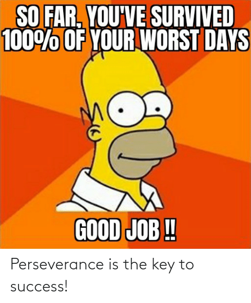 Key To: Perseverance is the key to success!