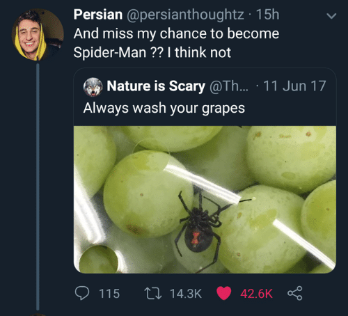 I Think Not: Persian @persianthoughtz 15h  And miss my chance to become  Spider-Man ?? I think not  Nature is Scary @Th... 11 Jun 17  Always wash your grapes  th 14.3K 42.6K  115