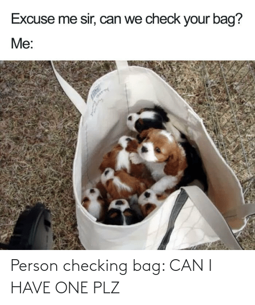bag: Person checking bag: CAN I HAVE ONE PLZ