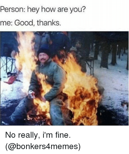 memes: Person: hey how are you?  me: Good, thanks. No really, i'm fine. (@bonkers4memes)