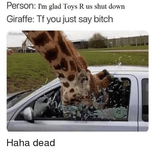 Toys R Us: Person: I'm glad Toys R us shut down  Giraffe: Tf you just say bitch Haha dead