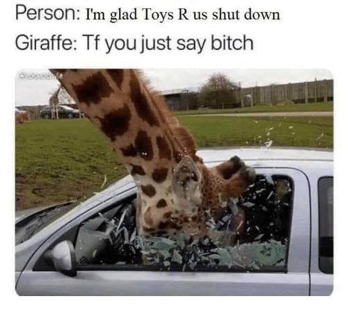 Toys R Us: Person: I'm glad Toys R us shut down  Giraffe: Tf you just say bitch