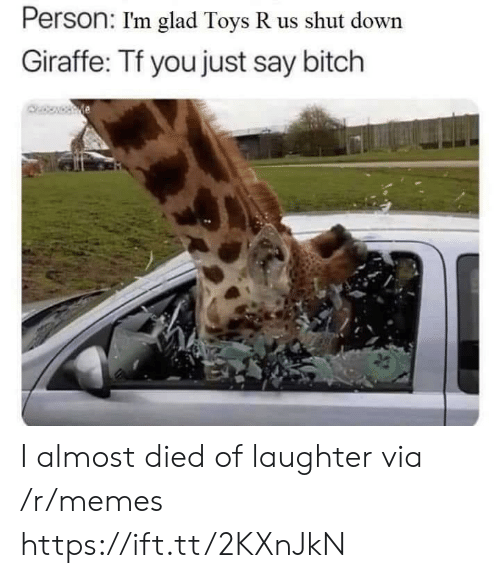 Toys R Us: Person: I'm glad Toys R us shut down  Giraffe: Tf you just say bitch I almost died of laughter via /r/memes https://ift.tt/2KXnJkN