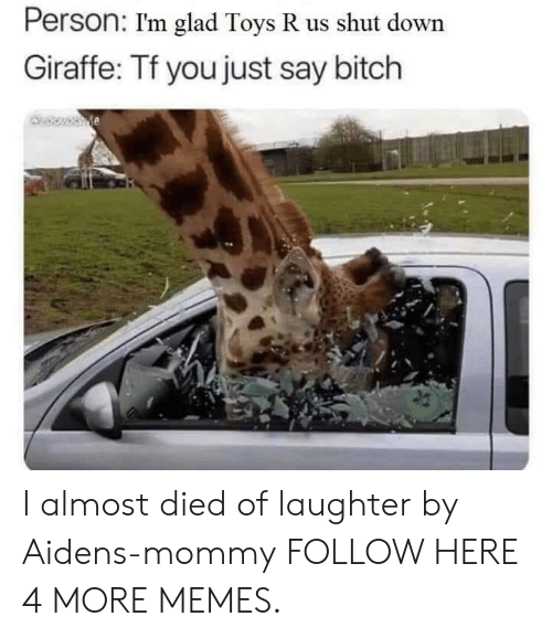 Toys R Us: Person: I'm glad Toys R us shut down  Giraffe: Tf you just say bitch I almost died of laughter by Aidens-mommy FOLLOW HERE 4 MORE MEMES.