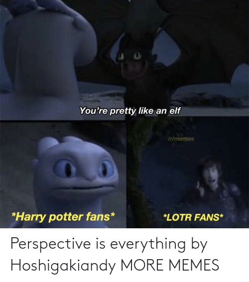 perspective: Perspective is everything by Hoshigakiandy MORE MEMES