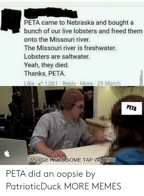 Nebraska: PETA came to Nebraska and bought a  bunch of our live lobsters and freed them  onto the Missouri river.  The Missouri river is freshwater.  Lobsters are saltwater.  Yeah, they died.  Thanks, PETA.  PETA  CAN I GET YOU SOME TAP WATER PETA did an oopsie by PatrioticDuck MORE MEMES