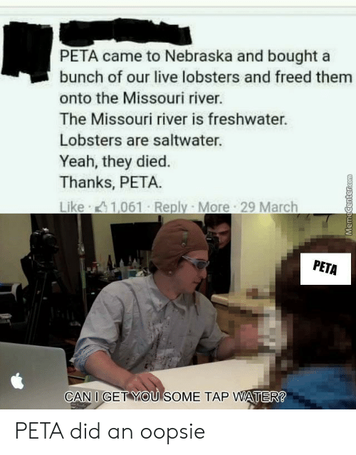 Nebraska: PETA came to Nebraska and bought a  bunch of our live lobsters and freed them  onto the Missouri river.  The Missouri river is freshwater.  Lobsters are saltwater.  Yeah, they died.  Thanks, PETA.  Like 1,061 Reply More 29 March  PETA  CAN I GET YOU SOME TAP WATER PETA did an oopsie