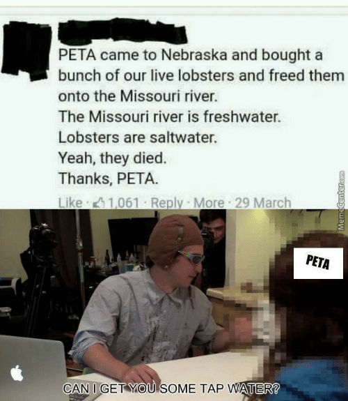 Nebraska: PETA came to Nebraska and bought a  bunch of our live lobsters and freed them  onto the Missouri river.  The Missouri river is freshwater.  Lobsters are saltwater.  Yeah, they died.  Thanks, PETA.  PETA  CAN I GET YOU SOME TAP WATER