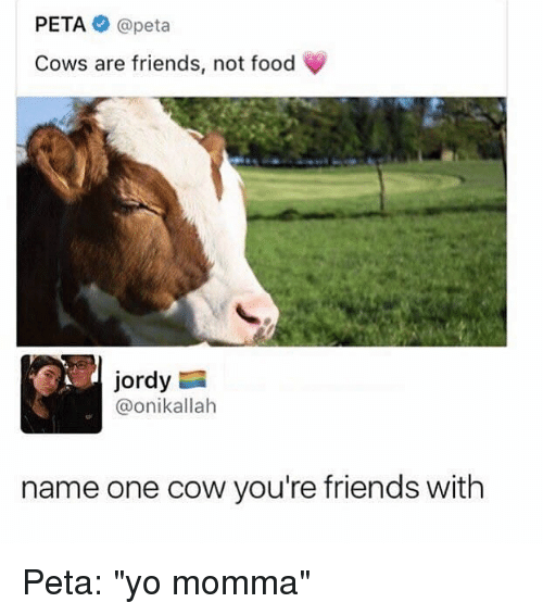 """Food, Friends, and Memes: PETA @peta  Cows are friends, not food  Jordy  @onikallah  name one cow you're friends with Peta: """"yo momma"""""""