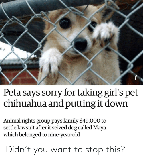 Lawsuit: Peta says sorry for taking girl's pet  chihuahua and putting it down  Animal rights group pays family $49,000 to  settle lawsuit after it seized dog called Maya  which belonged to nine-year-old Didn't you want to stop this?