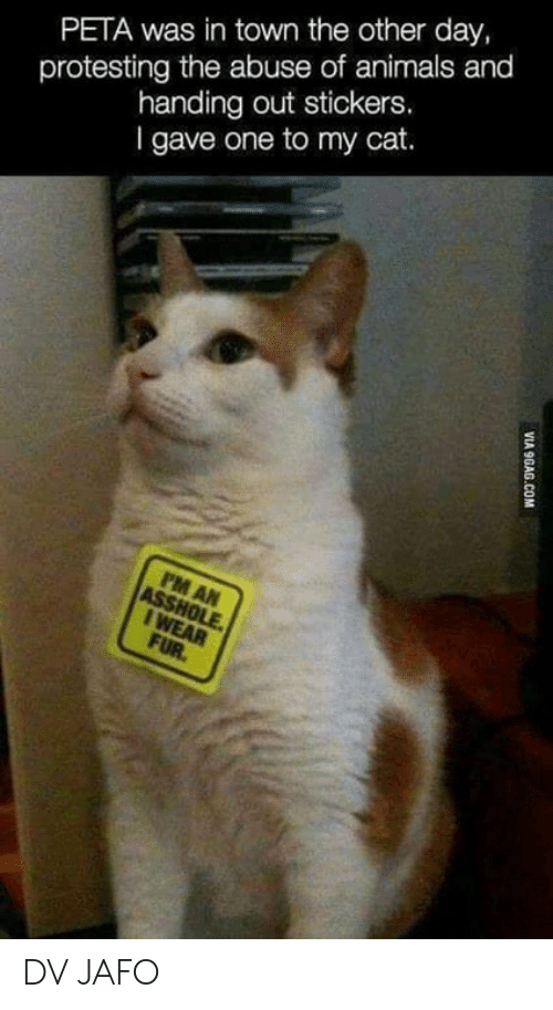 Protesting: PETA was in town the other day,  protesting the abuse of animals and  handing out stickers.  l gave one to my cat.  8 DV JAFO