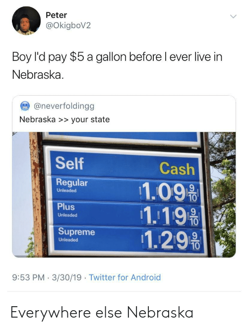 Nebraska: Peter  OkigboV2  Boy l'd pay $5 a gallon before l ever live in  Nebraska  @neverfoldingg  Nebraska >> your state  Self  Regular 11.09%  Cash  Unleaded  1.19  Unleaded  Supreme 1.29%  Unleaded  10  9:53 PM 3/30/19  Twitter for Android Everywhere else  Nebraska