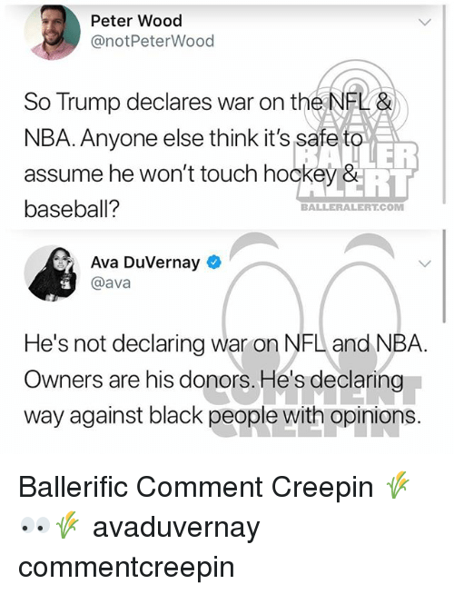 Baseball, Hockey, and Memes: Peter Wood  @notPeterWood  So Trump declares war on the NEL&  NBA. Anyone else think it's safe to  assume he won't touch hockey &  baseball?  ER  BALLERALERTCOM  Ava DuVernay  @ava  He's not declaring war on NFL and NBA  Owners are his donors. He's declaring  way against black people with opinions Ballerific Comment Creepin 🌾👀🌾 avaduvernay commentcreepin
