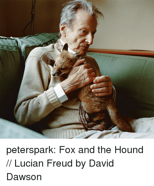 The Hound: peterspark:  Fox and the Hound // Lucian Freud by David Dawson