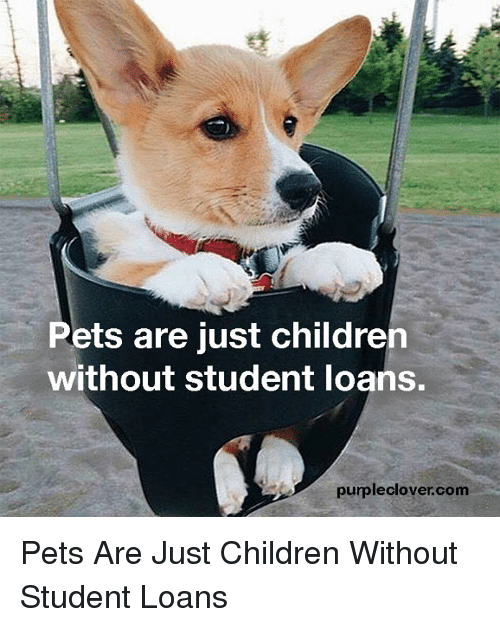 Memes, 🤖, and Clover: Pets are just childre  without student loans.  purple clover com Pets Are Just Children Without Student Loans