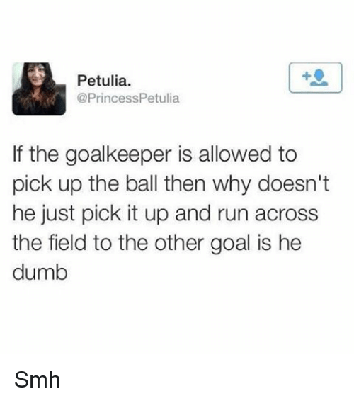 Dumb, Memes, and Run: Petulia.  @Princess Petulia  If the goalkeeper is allowed to  pick up the ball then why doesn't  he just pick it up and run across  the field to the other goal is he  dumb Smh