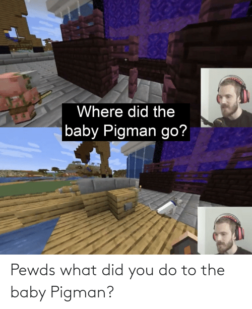 the baby: Pewds what did you do to the baby Pigman?