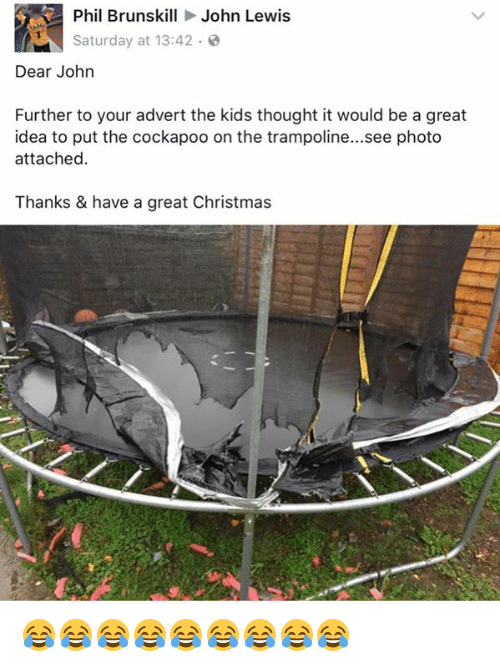 Adverted: Phil Brunskill John Lewis  Saturday at 13:42  Dear John  Further to your advert the kids thought it would be a great  idea to put the cockapoo on the trampoline...see photo  attached.  Thanks & have a great Christmas 😂😂😂😂😂😂😂😂😂