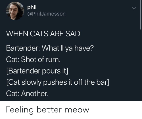 rum: phil  @PhilJamesson  WHEN CATS ARE SAD  Bartender: Whatll ya have?  Cat: Shot of rum  Bartender pours it]  [Cat slowly pushes it off the bar]  Cat: Another. Feeling better meow