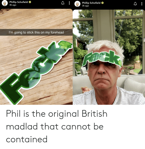 phillip schofield: Phillip Schofield  4h ago  Phillip Schofield  3h ago  I'm going to stick this on my forehead  Rask  Feck Phil is the original British madlad that cannot be contained