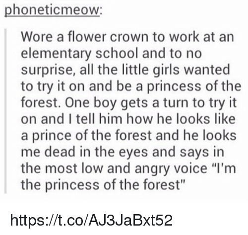 "Memes, Prince, and Elementary: phoneticmeow:  Wore a flower crown to work at an  elementary school and to no  surprise, all the little girls wanted  to try it on and be a princess of the  forest. One boy gets a turn to try it  on and I tell him how he looks like  a prince of the forest and he looks  me dead in the eyes and says in  the most low and angry voice ""l'm  the princess of the forest"" https://t.co/AJ3JaBxt52"