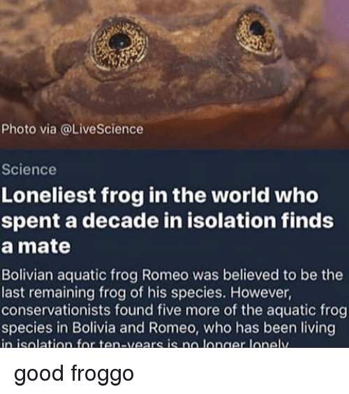 Frog Species: Photo via @LiveScience  Science  Loneliest frog in the world who  spent a decade in isolation finds  a mate  Bolivian aquatic frog Romeo was believed to be the  last remaining frog of his species. However,  conservationists found five more of the aquatic frog  species in Bolivia and Romeo, who has been living  in isolation for ten-vears is no longer lone