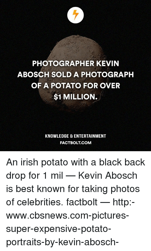Irish, Memes, and Potato: PHOTOGRAPHER KEVIN  BOSCH SOLD A PHOTOGRAPH  OF A POTATO FOR OVER  $1 MILLION.  KNOWLEDGE ENTERTAINMENT  FACT BOLT COM An irish potato with a black back drop for 1 mil‽ — Kevin Abosch is best known for taking photos of celebrities. factbolt — http:-www.cbsnews.com-pictures-super-expensive-potato-portraits-by-kevin-abosch-