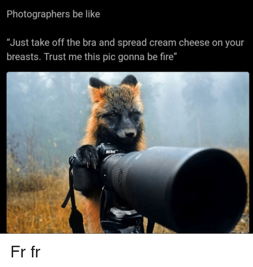 """Fr Fr: Photographers be like  """"Just take off the bra and spread cream cheese on your  breasts. Trust me this pic gonna be fire""""  Il  Niko Fr fr"""