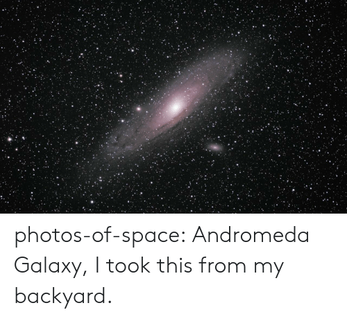 backyard: photos-of-space:  Andromeda Galaxy, I took this from my backyard.