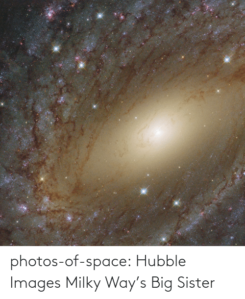 photos: photos-of-space:  Hubble Images Milky Way's Big Sister