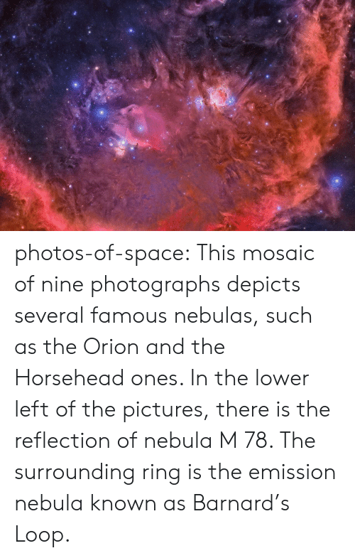 nebulas: photos-of-space:  This mosaic of nine photographs depicts several famous nebulas, such as the Orion and the Horsehead ones. In the lower left of the pictures, there is the reflection of nebula M 78. The surrounding ring is the emission nebula known as Barnard's Loop.
