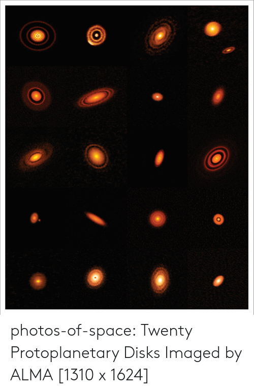alma: photos-of-space:  Twenty Protoplanetary Disks Imaged by ALMA [1310 x 1624]