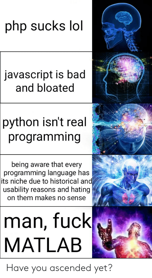 Historical: php sucks lol  javascript is bad  and bloated  python isn't real  programming  being aware that every  programming language has  its niche due to historical and  usability reasons and hating  on them makes no sense  man, fuck  MATLAB Have you ascended yet?