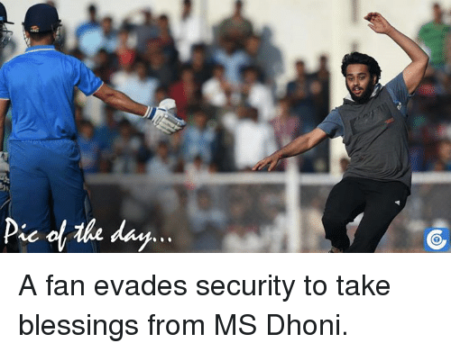 memes: Pic day A fan evades security to take blessings from MS Dhoni.