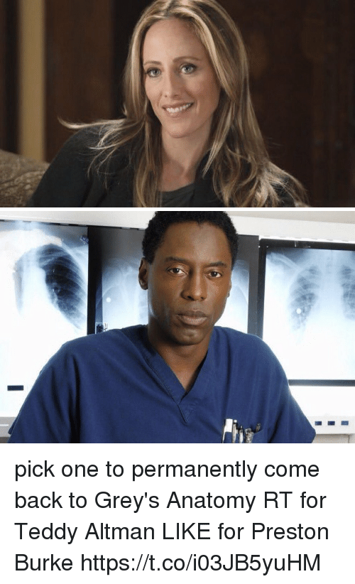 Memes, Grey's Anatomy, and Back: pick one to permanently come back to Grey's Anatomy  RT for Teddy Altman LIKE for Preston Burke https://t.co/i03JB5yuHM