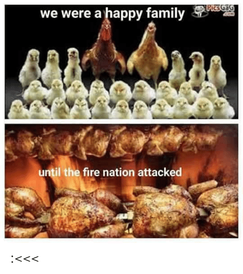 Nation: PicsGaG  we were a happy family  until the fire nation attacked :<<<