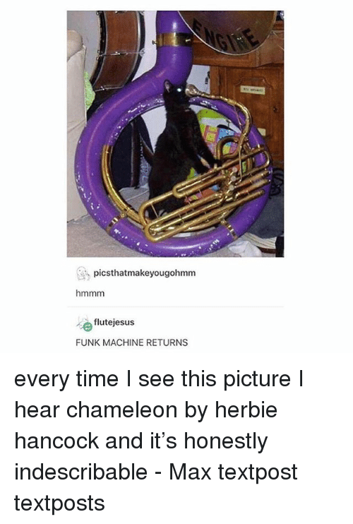 Memes, Chameleon, and Time: picsthatmakeyougohmm  hmmm  flutejesus  FUNK MACHINE RETURNS every time I see this picture I hear chameleon by herbie hancock and it's honestly indescribable - Max textpost textposts