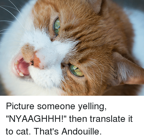 "Translate, Cat, and Picture: Picture someone yelling, ""NYAAGHHH!"" then translate it to cat. That's Andouille."