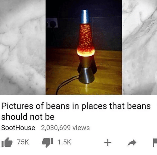 Pictures, Pictures Of, and  Views: Pictures of beans in places that beans  should not be  SootHouse 2,030,699 views  75K  1.5K