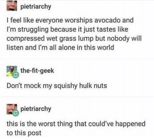 My Squishy: pietriarchy  I feel like everyone worships avocado and  I'm struggling because it just tastes like  compressed wet grass lump but nobody will  listen and I'm all alone in this world  the-fit-geek  Don't mock my squishy hulk nuts  pietriarchy  this is the worst thing that could've happened  to this post