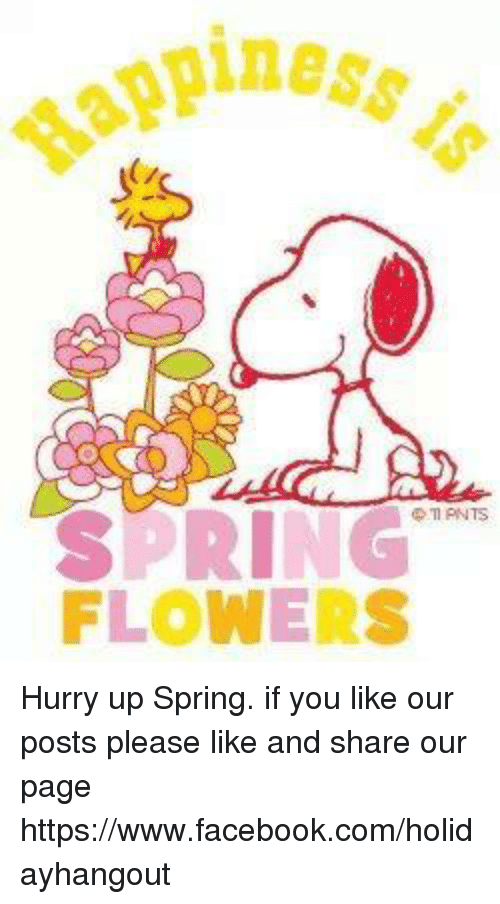 Memes, 🤖, and Page: piness.  SPRING  FLOWERS Hurry up Spring.    if you like our posts please like and share our page  https://www.facebook.com/holidayhangout