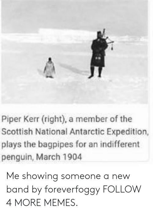 antarctic: Piper Kerr (right), a member of the  Scottish National Antarctic Expedition,  plays the bagpipes for an indifferent  penguin, March 1904 Me showing someone a new band by foreverfoggy FOLLOW 4 MORE MEMES.