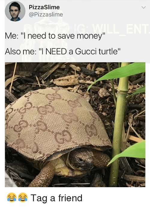 "Gucci, Memes, and Money: PizzaSlime  @Pizzaslime  Me: ""l need to save money""  Also me: ""I NEED a Gucci turtle"" 😂😂 Tag a friend"