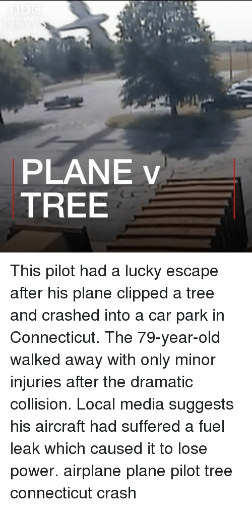 Memes, Airplane, and Connecticut: PLANE v  TREE This pilot had a lucky escape after his plane clipped a tree and crashed into a car park in Connecticut. The 79-year-old walked away with only minor injuries after the dramatic collision. Local media suggests his aircraft had suffered a fuel leak which caused it to lose power. airplane plane pilot tree connecticut crash