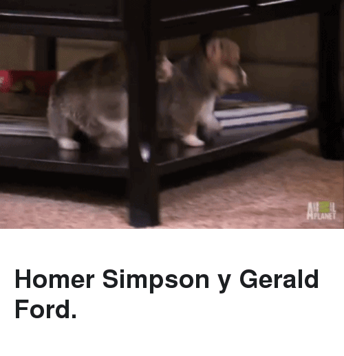 Ford: PLANET <h3>Homer Simpson y Gerald Ford.</h3>