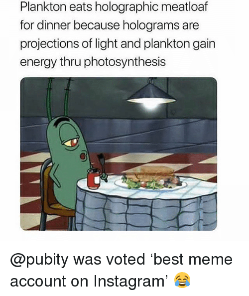 Energy, Instagram, and Meme: Plankton eats holographic meatloaf  for dinner because holograms are  projections of light and plankton gain  energy thru photosynthesis @pubity was voted 'best meme account on Instagram' 😂