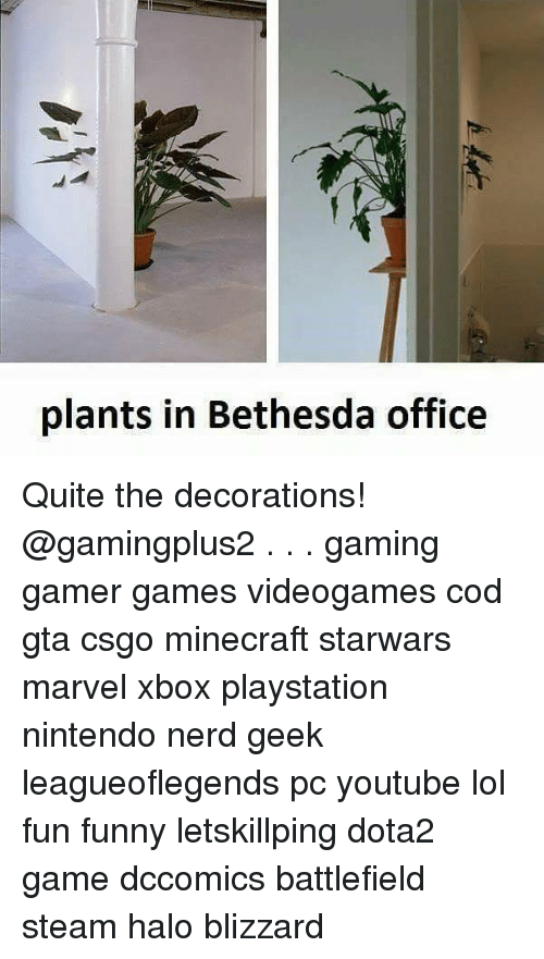 Funny, Halo, and Lol: plants in Bethesda office Quite the decorations! @gamingplus2 . . . gaming gamer games videogames cod gta csgo minecraft starwars marvel xbox playstation nintendo nerd geek leagueoflegends pc youtube lol fun funny letskillping dota2 game dccomics battlefield steam halo blizzard