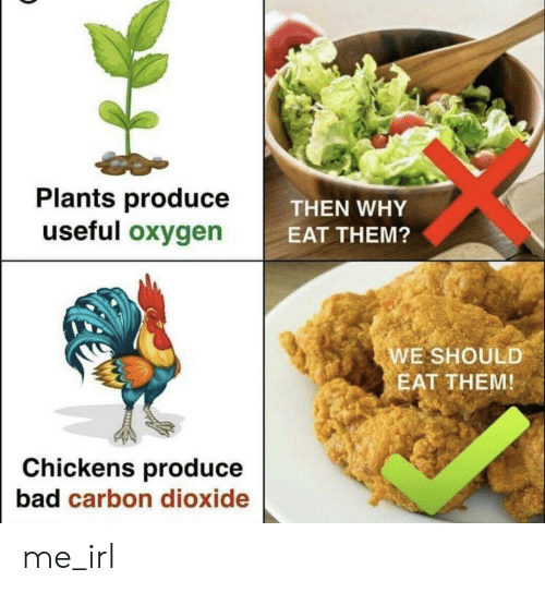 carbon dioxide: Plants produce  useful oxygen  THEN WHY  EAT THEM?  WE SHOULD  EAT THEM  Chickens produce  bad carbon dioxide me_irl