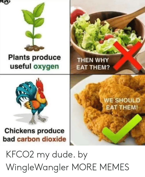 carbon dioxide: Plants produceT  useful oxygen  THEN WHY  EAT THEM?  E SHOULD  EAT THEM!  Chickens produce  bad carbon dioxide KFCO2 my dude. by WingleWangler MORE MEMES